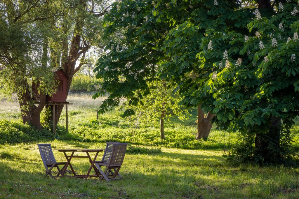 5 Leuke dingen om te maken van hout voor in de tuin