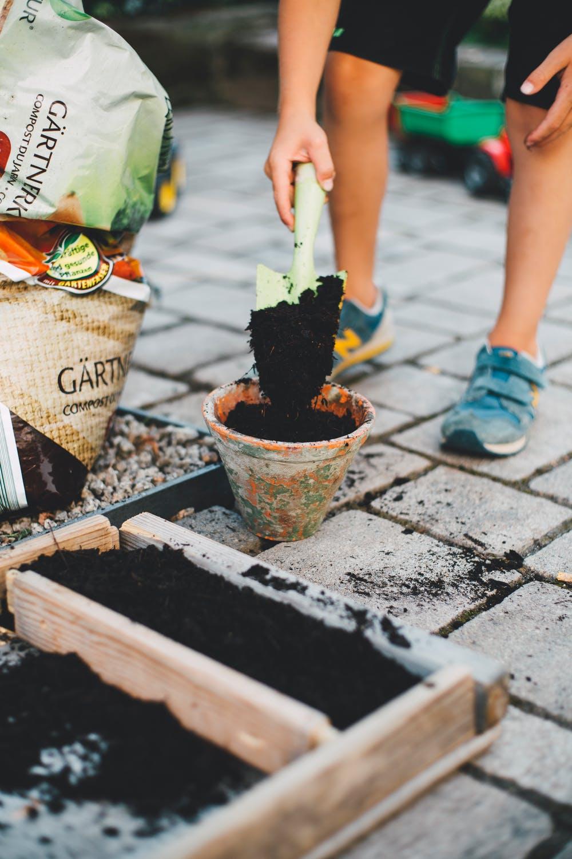 Bloembollen planten + voorbereiding: Tips